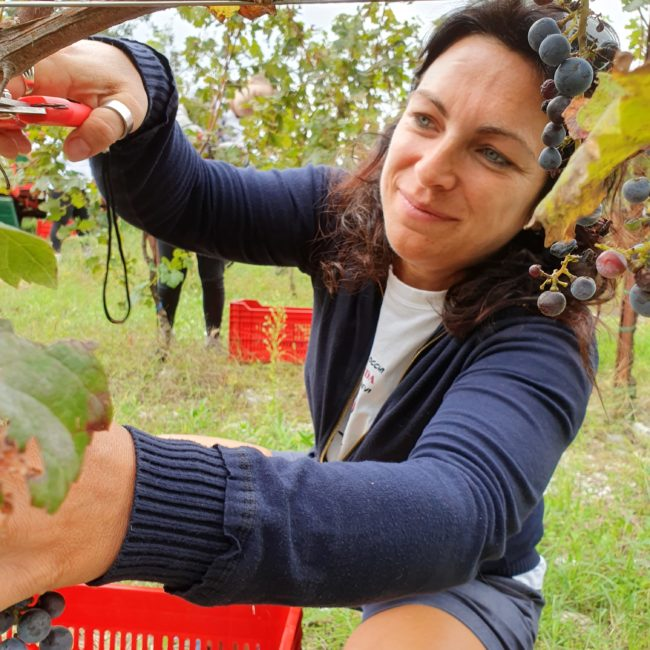 Harvest with family - blog - la guarda