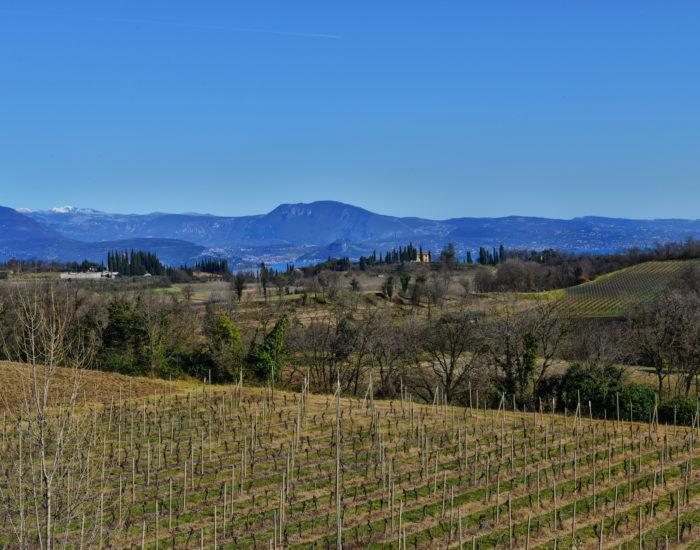 Valtenesi - colline moreniche